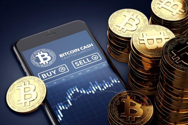 今後ビットコインキャッシュの価値は上昇を見せる