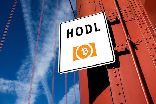 ビットコイン(BTC)っていつまでホールドすべきなの? ~仮想通貨スラングを学びながら~